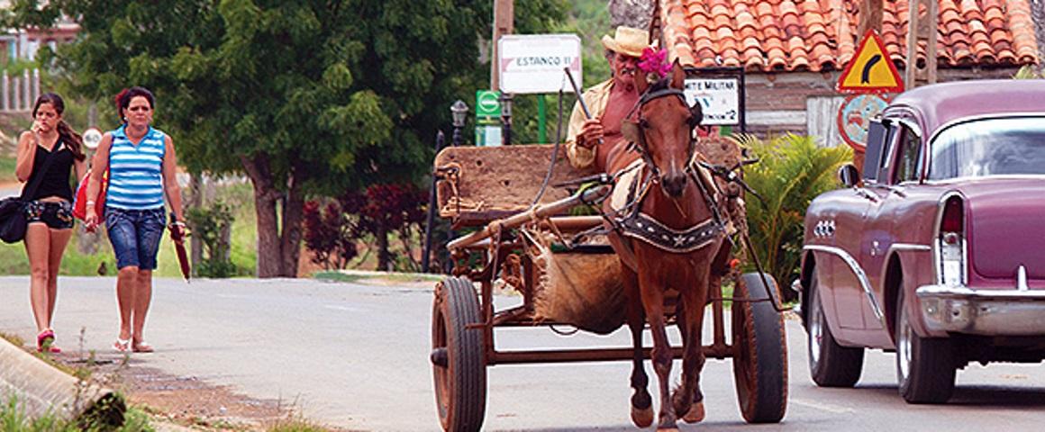 Cuba Donkey Street B TauckR